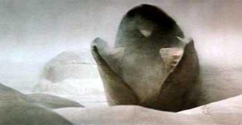dune sandwurm