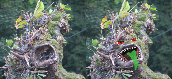 Baum hydra
