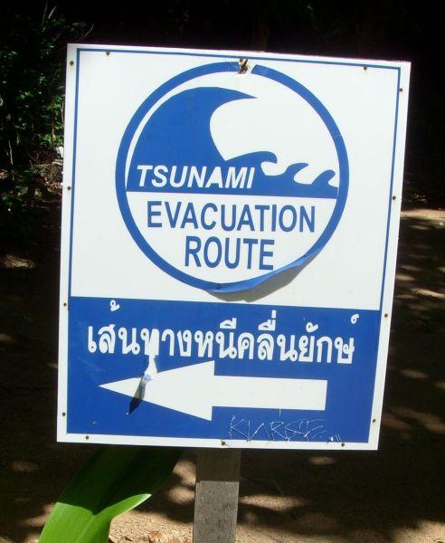 tsunami evakuierung schild
