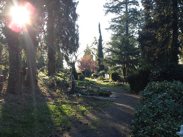 poppelsdorfer friedhof