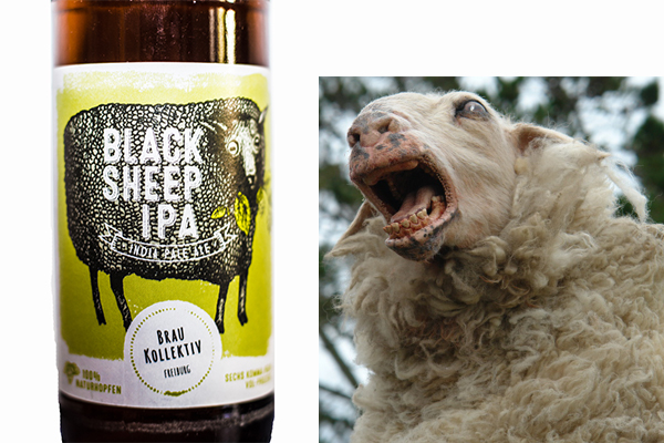 black sheep bier